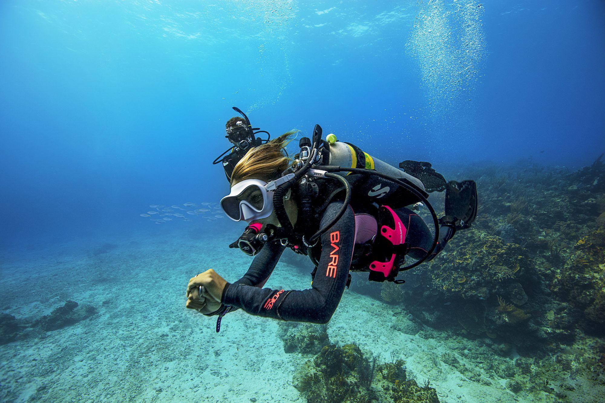 Corso Open Water Diver - Lezione Teorica On Line